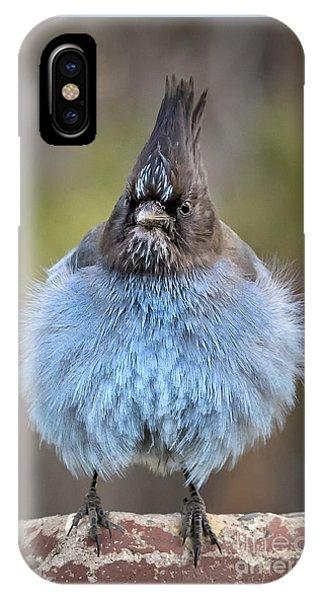 Big Blue IPhone Case