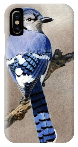 Big Blue Jay IPhone Case