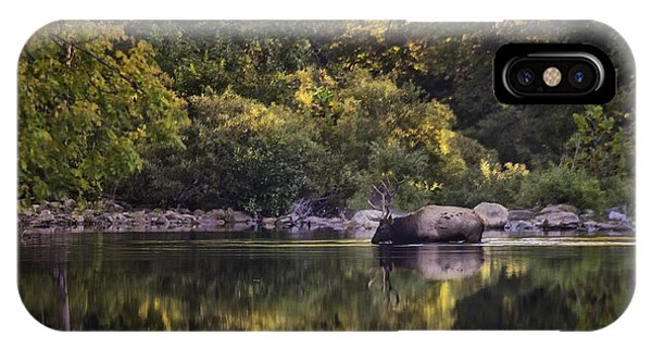 Big Bull In Buffalo National River Fall Color IPhone Case