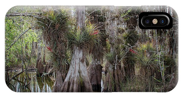 Big Cypress Preserve IPhone Case