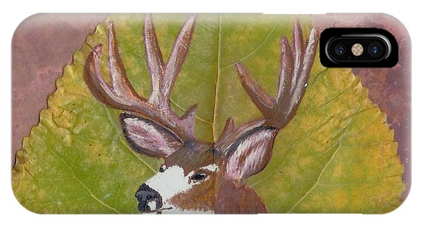 Big Mule Deer Buck IPhone Case