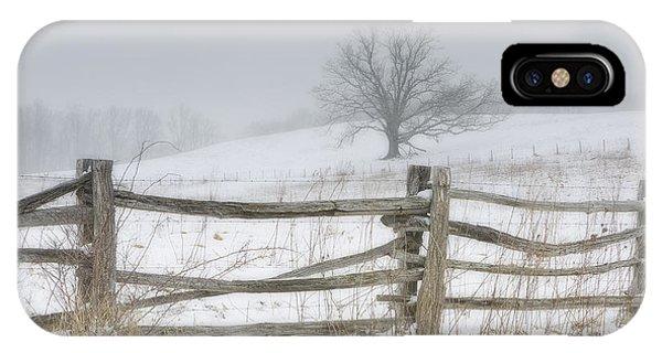 Big Oak Tree IPhone Case