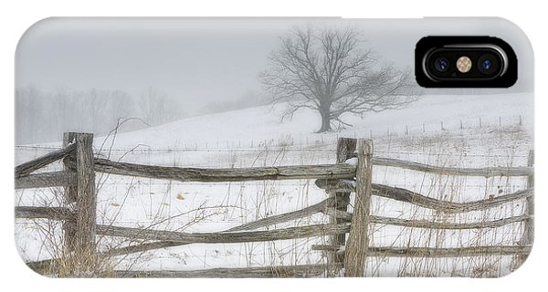 Big Oak Tree IPhone Case