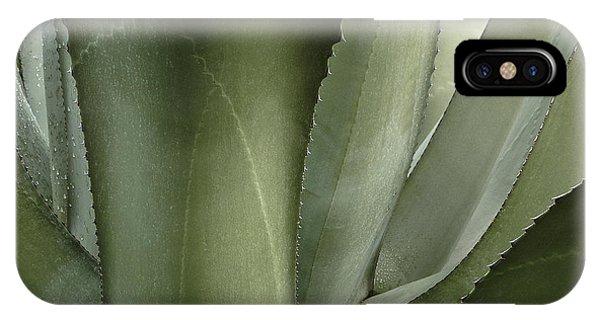 Big Sur Succulent IPhone Case