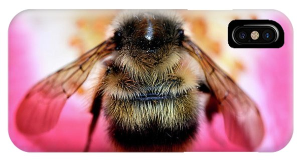 Big Time Bee Close Up Phone Case by Terry Elniski