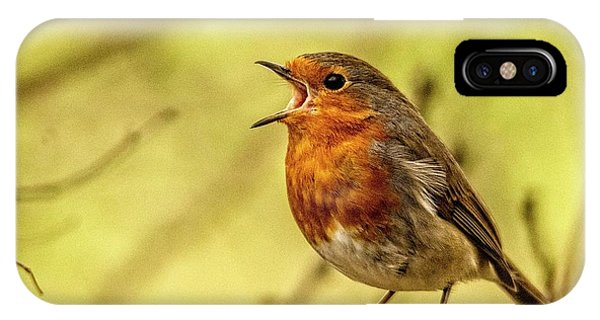 IPhone Case featuring the photograph Big Voice Robin  by Cliff Norton