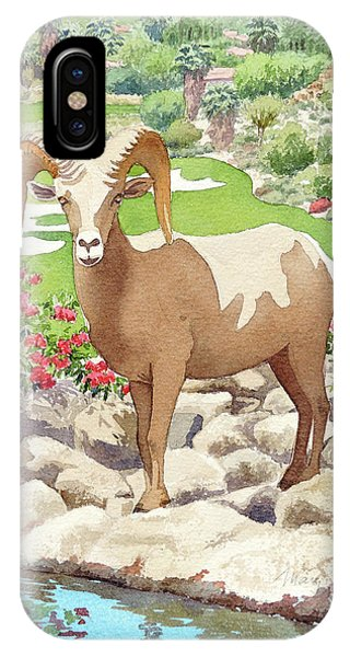 Bighorn Sheep On Golf Course IPhone Case