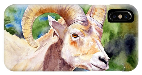 Bighorn Sheep Portrait IPhone Case
