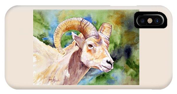 Bighorn Sheep Portrait IPhone Case