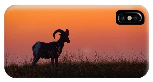 Bighorn Sunset IPhone Case