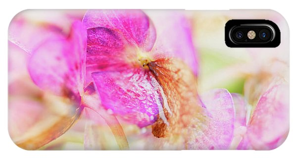 IPhone Case featuring the photograph Bigleaf Hydrangea Abstract by Nick Biemans