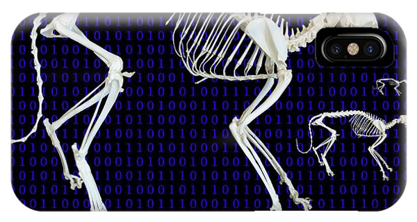 iPhone Case -   Binary Tiger Skeleton by Bob Christopher