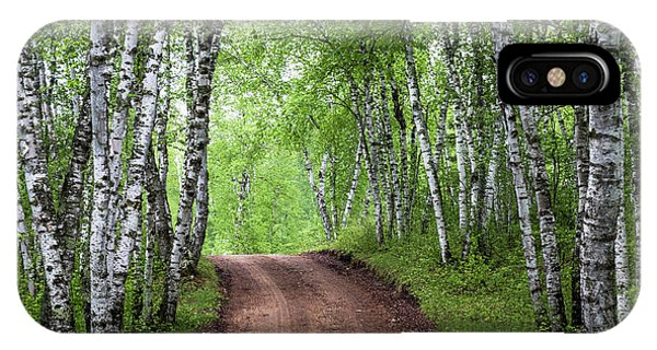 IPhone Case featuring the photograph Birch Tree Forest Path #3 by Patti Deters