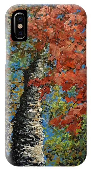 Birch Tree - Minister's Island IPhone Case