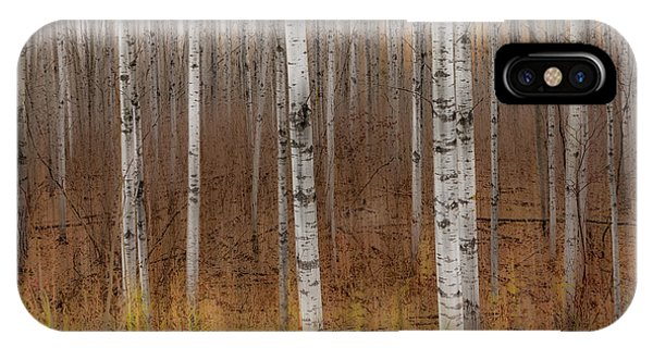 Birch Trees Abstract #2 IPhone Case