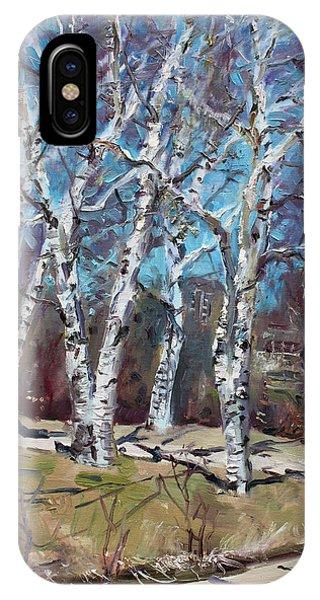 Birch Tree iPhone Case - Birch Trees Next Door by Ylli Haruni