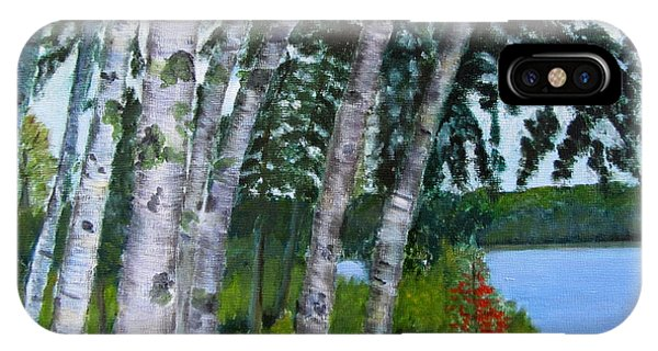 Birches At First Connecticut Lake IPhone Case