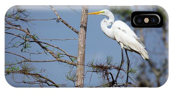 Bird 154 IPhone Case
