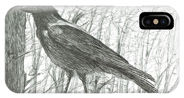 Raven iPhone Case - Bird, 2011 by Vincent Alexander Booth