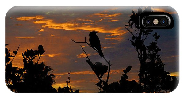 Bird At Sunset IPhone Case
