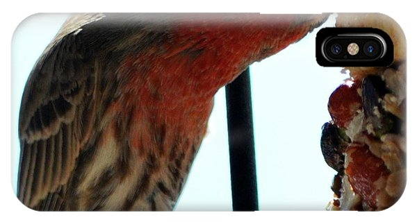 Bird Hits The Jackpot IPhone Case