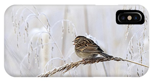 Bird In First Frost IPhone Case