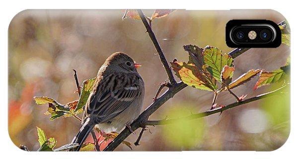 Bird In  Tree IPhone Case