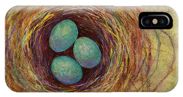 Colorful Bird iPhone Case - Bird Nest by Hailey E Herrera