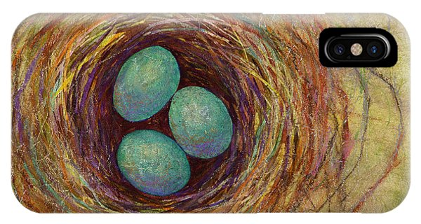 Eggs iPhone Case - Bird Nest by Hailey E Herrera