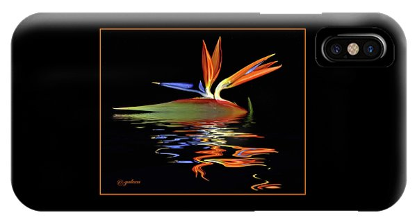 Bird Of Paradise On Water IPhone Case