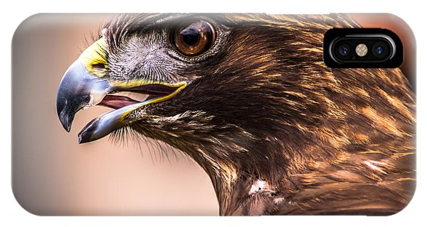 Bird Of Prey Profile IPhone Case