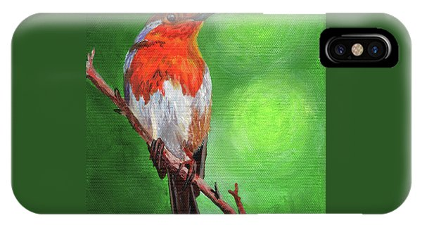 Aztec iPhone Case - Bird On A Branch by Timithy L Gordon