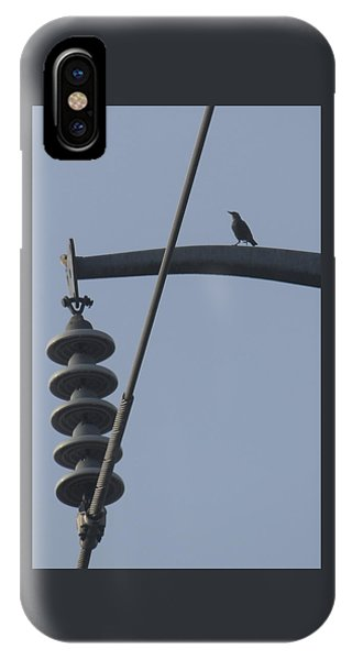 Bird On A High Wire IPhone Case