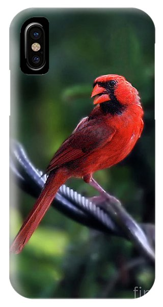 Bird On A Wire IPhone Case