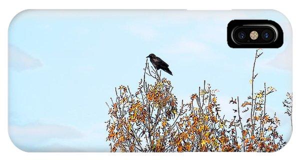 Bird On Tree IPhone Case