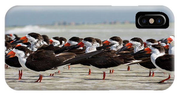 Bird Party IPhone Case