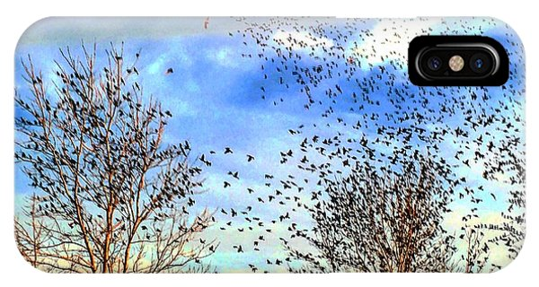 Bird Swarms Versus Hawks On The Prairie IPhone Case