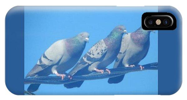 Bird Trio IPhone Case