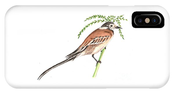 Bisbita Arboreo IPhone Case