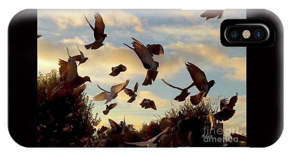 Birds And Fun At Butler Park Austin - Birds 1 IPhone Case
