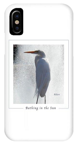 Birds And Fun At Butler Park Austin - Birds 2 Macro Poster IPhone Case
