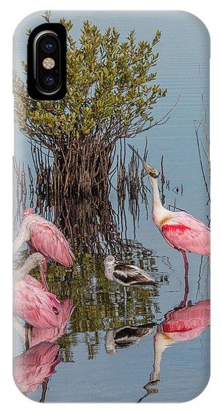 Birds And Mangrove Bush IPhone Case