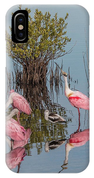 Birds And Mangrove Bush IPhone Case