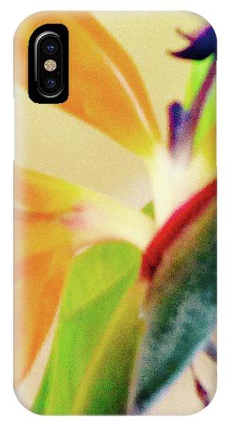 Birds Bromeliads Halyconia 2 IPhone Case