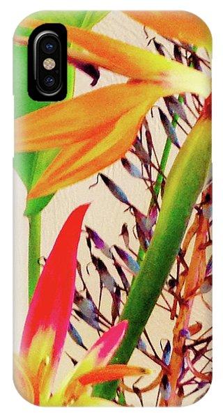 Birds Bromeliads Halyconia IPhone Case
