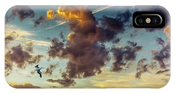 Birds In Flight At Sunset IPhone Case
