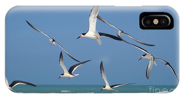 Birds In Paradise Phone Case by Jan Daniels