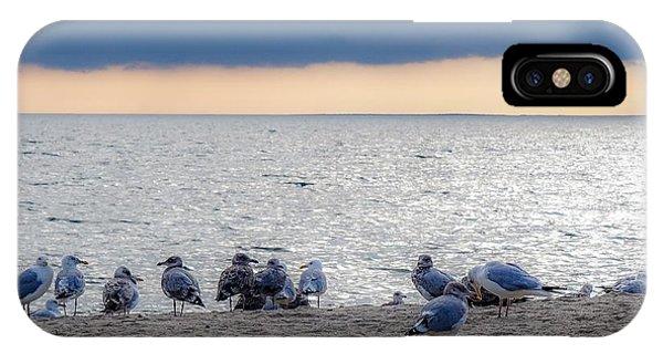 Birds On A Beach IPhone Case