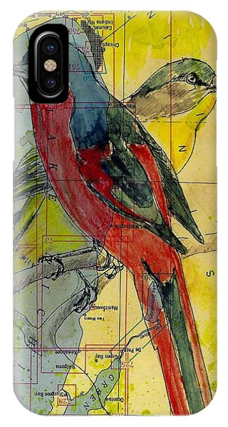 Birds On A Map IPhone Case