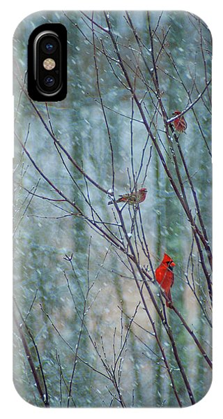 Birds On A Snowy Day IPhone Case
